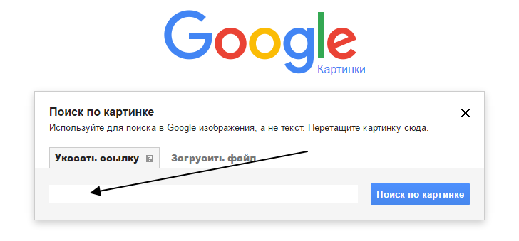 google_poisk_po_kartinke_2